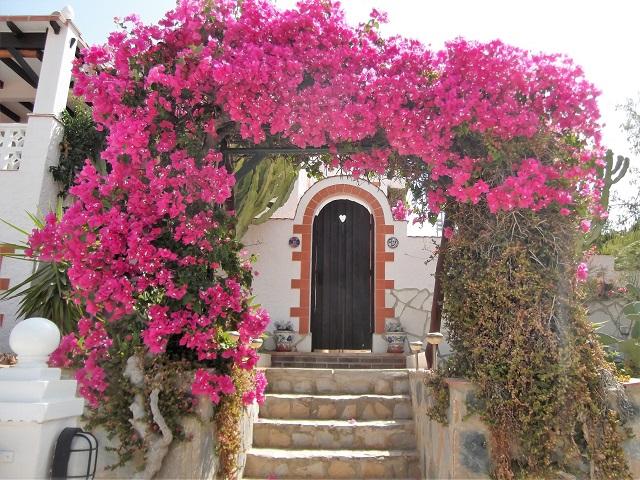 Villa in San Vicente del Raspeig
